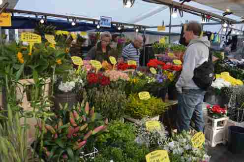 Flowers for sale at Albert Cuyp Markt