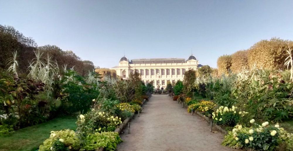 jardindesPlantes2